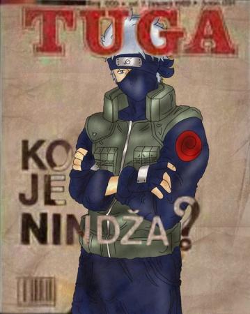 Disco-Ninja