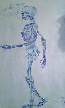 Blue Skeletons 2