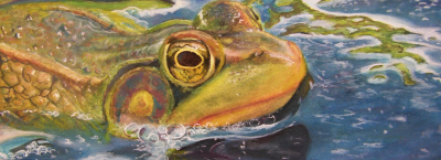 Frog: Gouache Painting