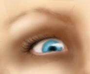 The Eye - A Work in Progress