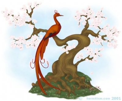 Firebird in a Cherry Tree