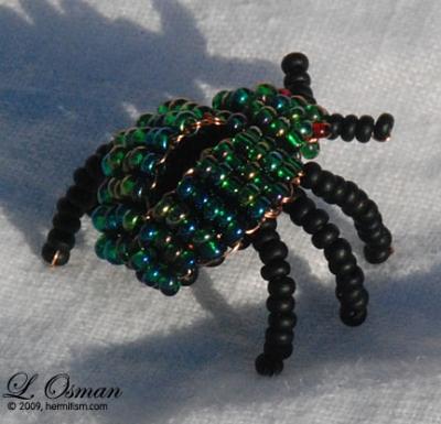 Emerald scarab Beetle
