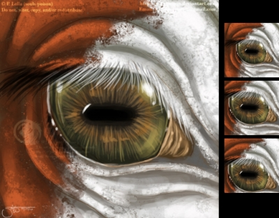 PulleyBoy's Eye - Icon