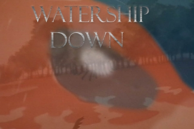 watership downj