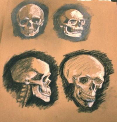 Skull Study 2: Light