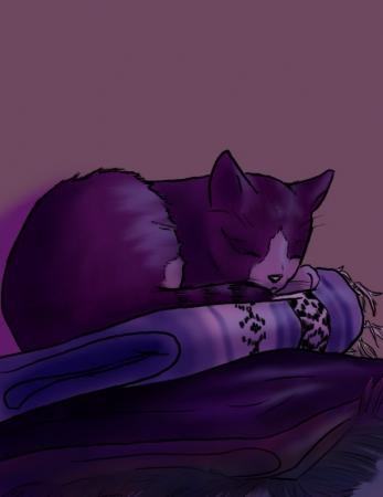 Snoozing Kitty