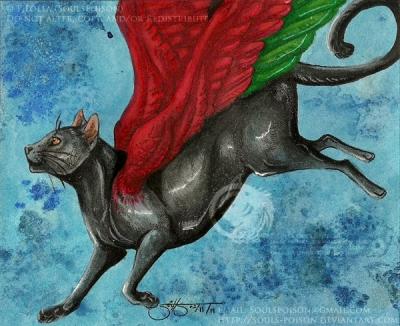 The Catbird