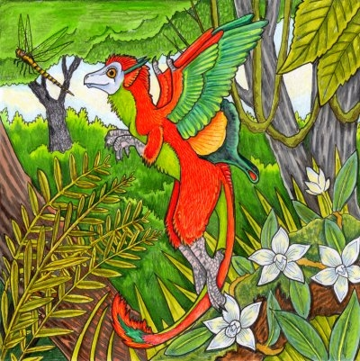 Pippit in colour