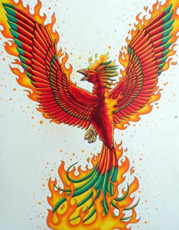 Commission - Phoenix Tattoo