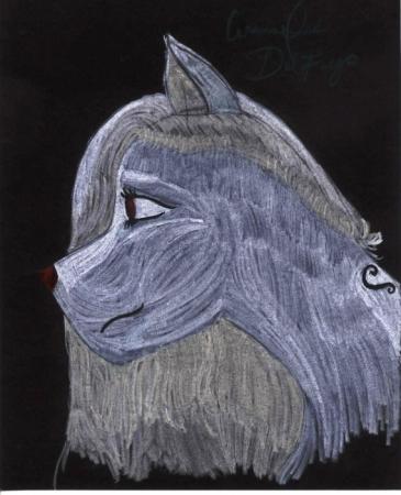 Portrait Series : Ink