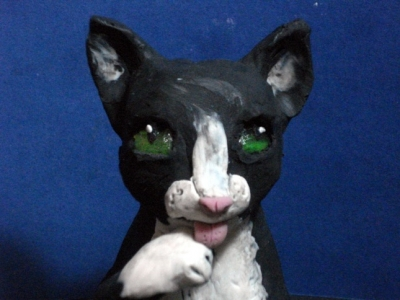 Cat clay animation