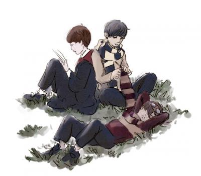 Novel/Knitting/Naps