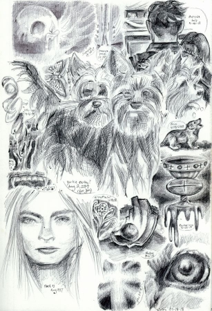 sketchpage 21