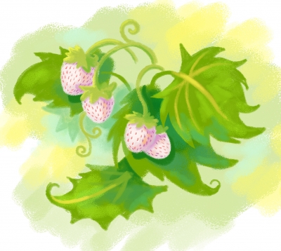 [Sketch dailies] Pineberry