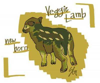 Veggie Lamb