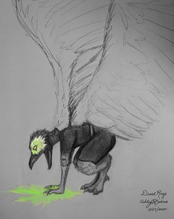 Druid Rage