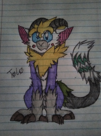 Toko, the Golden Wolf Salamand