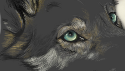 Windows of the soul wip