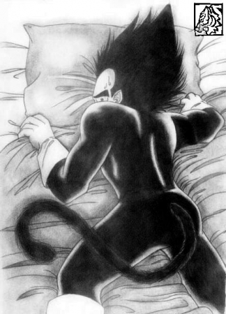 anouther Vegita in the bed