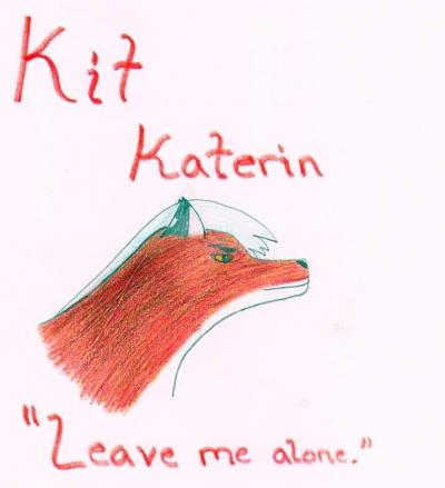Kit profile