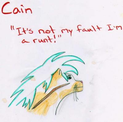 Cain profile
