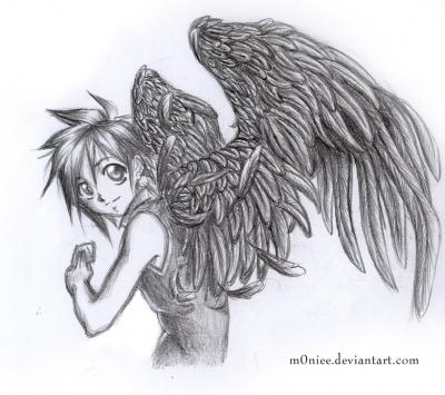 Black wings of two souls