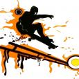 SkateBordHavk