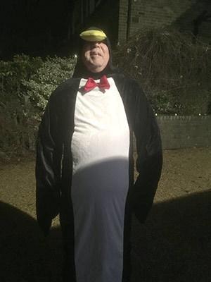 Adventure penguin 1