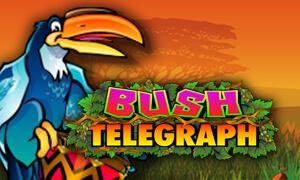 Bush Telegraph thumbnail