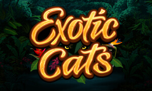 Exotic Cats thumbnail