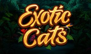 Exotic Cats thumbnail