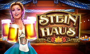 Stein Haus thumbnail