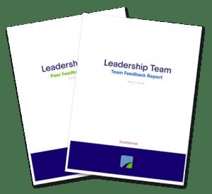 peer feedback reports