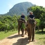 Mariah Cherniss on elephants with husband Blue Beyond Consulting bay area