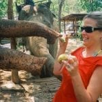 gretchen hoover anderson and elephants blue beyond consulting bay area