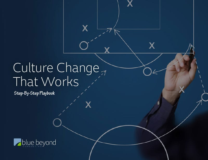 organizational culture change playbook