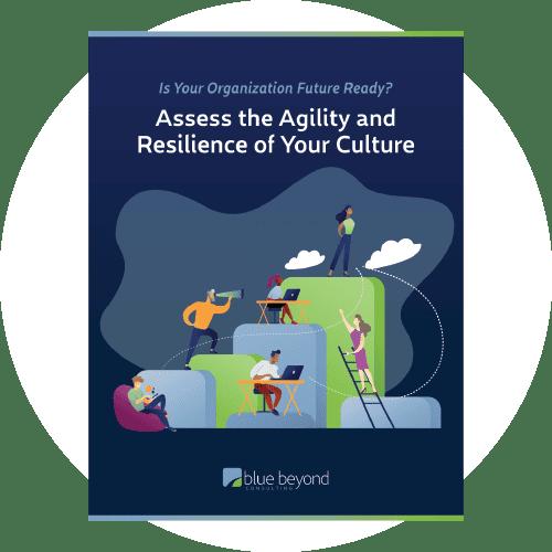 culture assessment cover ebook