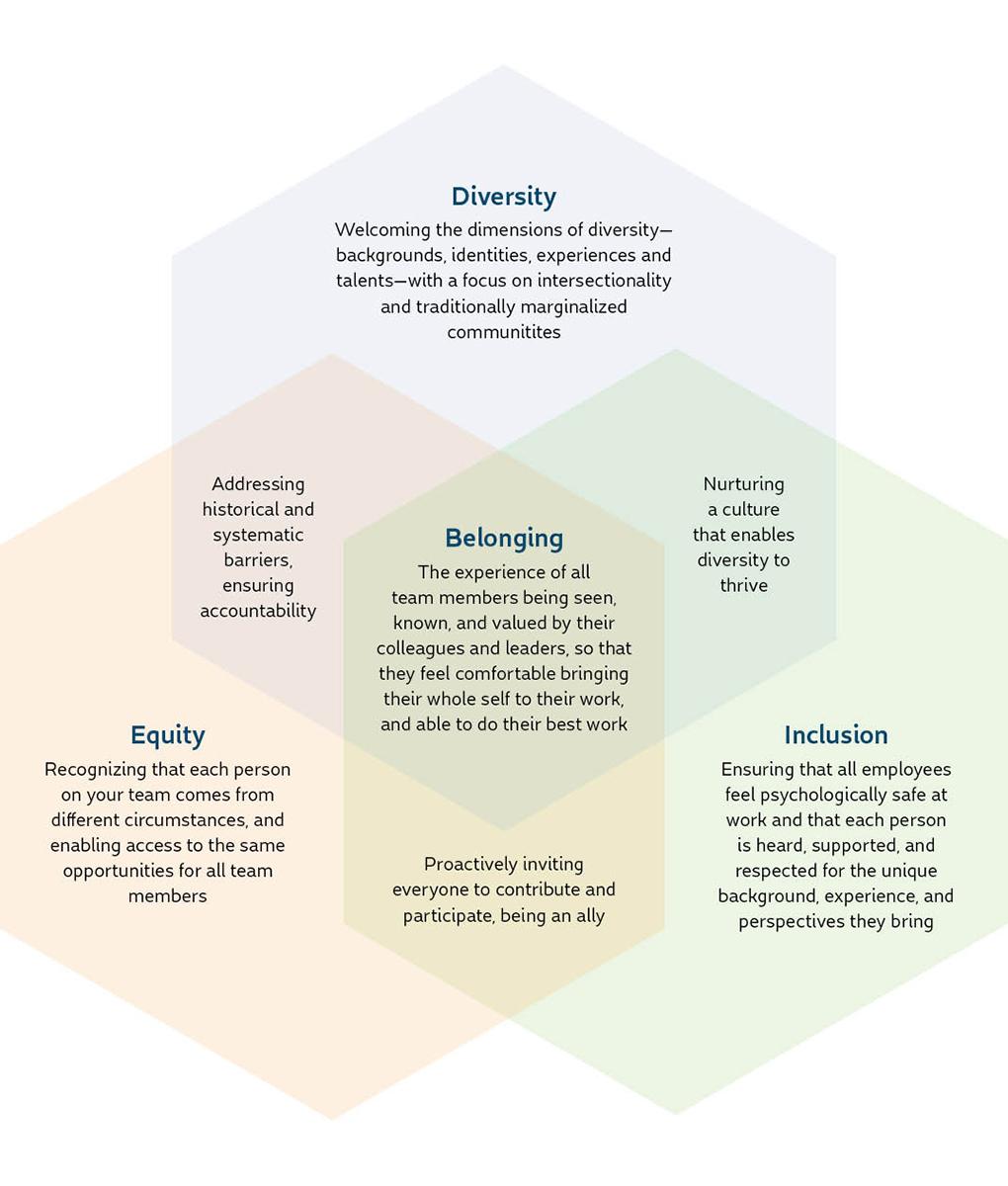 dei-venn-diagram Visual of DEI Definitions