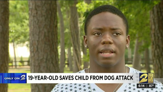 Teen Rescues 6-Year-Old From Dog Attack in Harrowing Video: 'I Ran Over There Without Thinking'