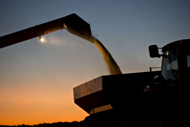U.S. Farmers Cry Foul as Their Biggest Export Market Slips Away