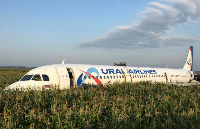 Hero pilot carrying 226 tourists lands in cornfield after plane collided with flock of birds
