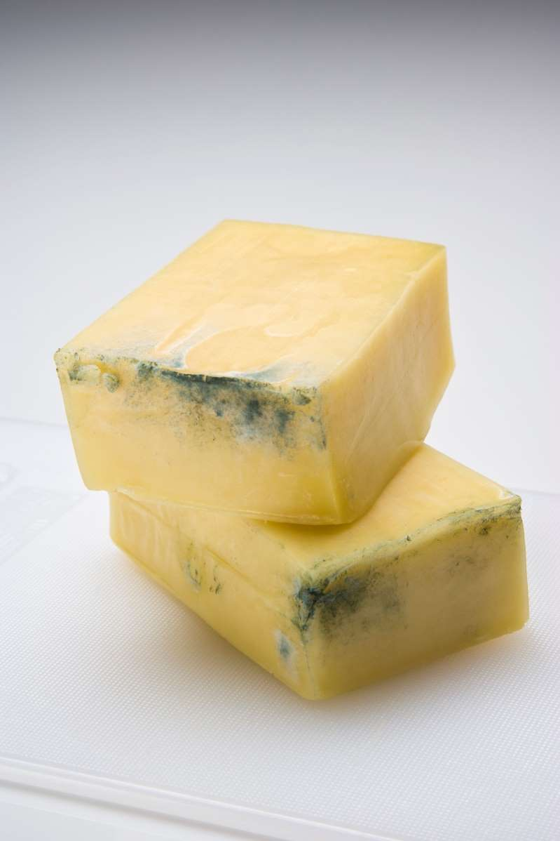 Does a little mold spoil the whole block of cheese?