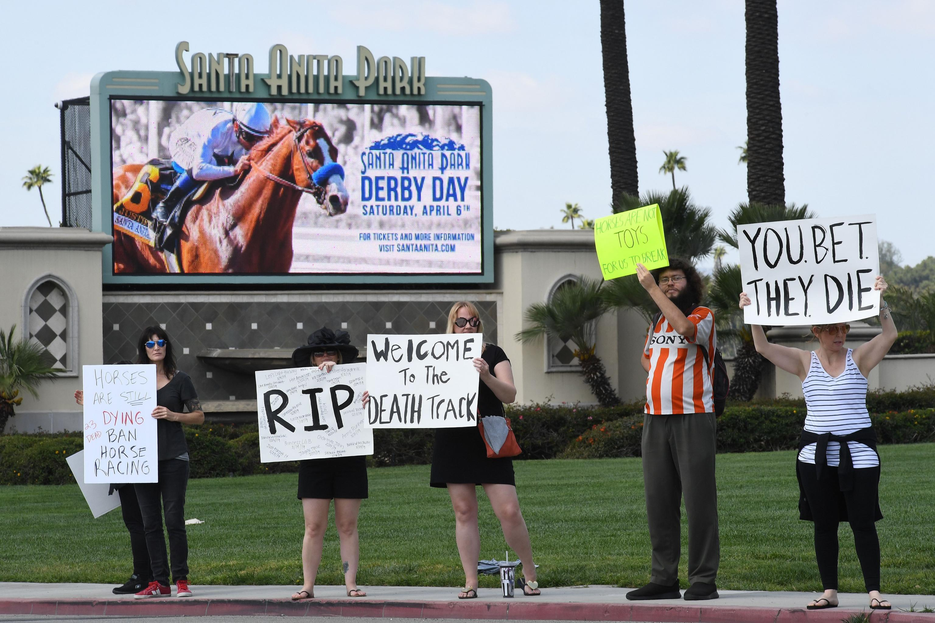Kochees Euthanized After Race; 26th Horse Death at Santa Anita Since December