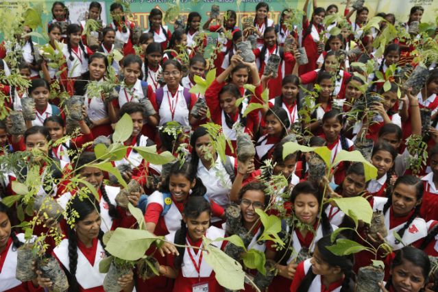 Indians plant 220 million trees in single day