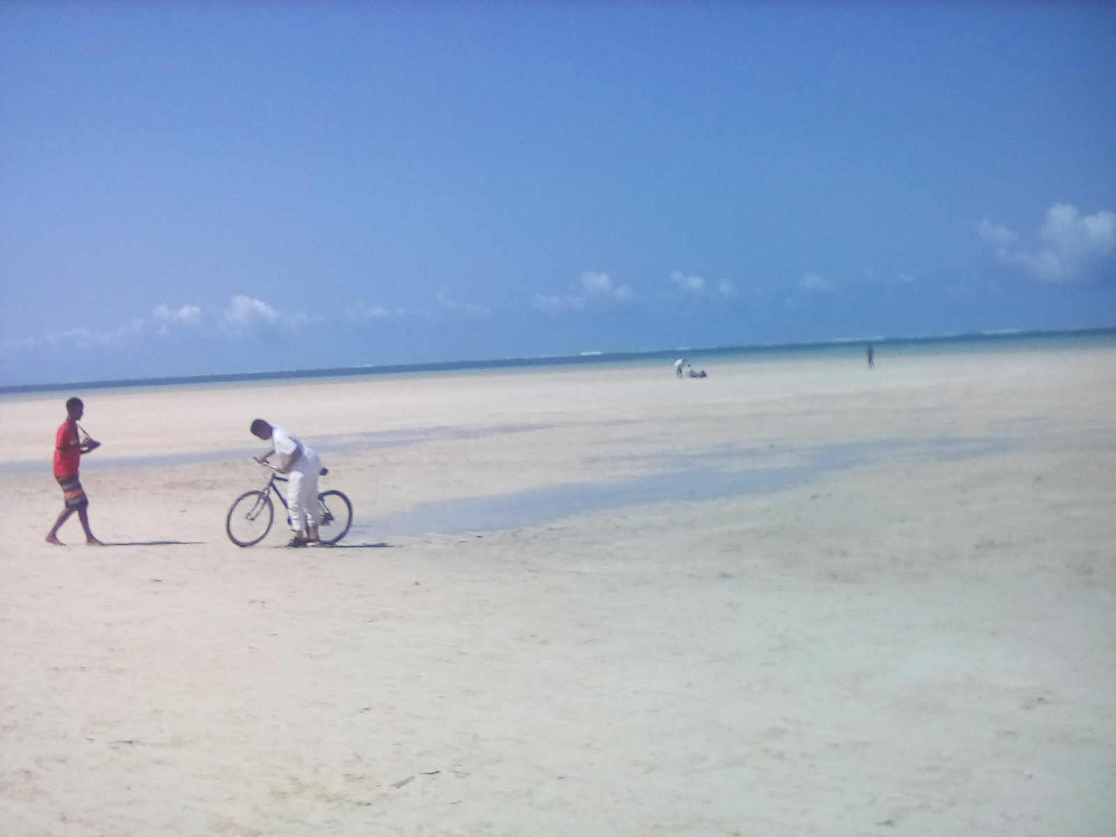 A ride in the sand on a sunny day. Beauty of Kenya. Mombasa