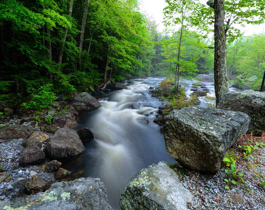 Tranquil rushing stream in the mountains of Vermont