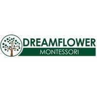 Dreamflowerindia Montessori