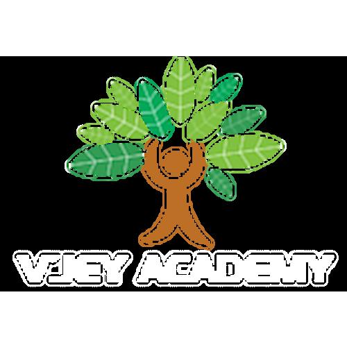 V'JEY ACADEMY, V'Jey Academy