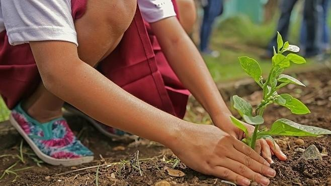5 Charitable Things Every Child Should Do