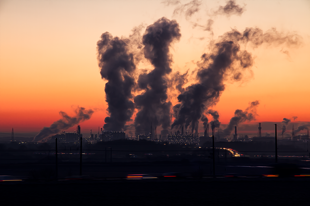 How Does Pollution Affect Your Child's Health?